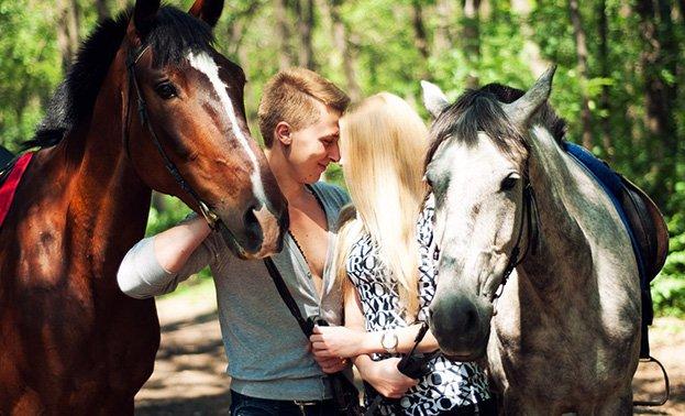 marriage proposal horse walk riding aosta courmayeur chamonix cervinia